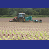 Sampling Solutions for the Agriculture Industry including crops and animals